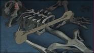Bones in the Pyramid