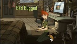 Bed Bugged