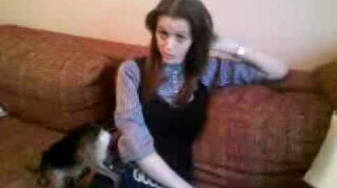 Видео, которое сделало Дарью Перель популярной в интернете