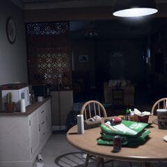 Die Küche mit Sicht auf den Wohnbereich