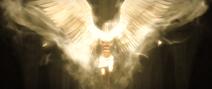 Adam Angel