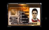 DXMD story item Irenka Bauer's Permit