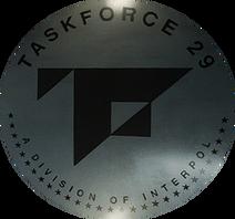 Task Force 29 logo