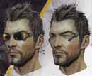 Jensen shades