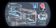 Gray scan