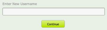 Username change field