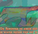Do Remember to Check out the Water Before you get in! (Bad Water)