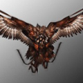 Griffon (PSN Avatar) DMC
