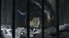 Mission 05-Scene 01