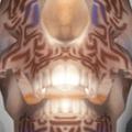 Sargasso (PSN Avatar) DMC