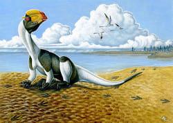 DilophosaurusHKL