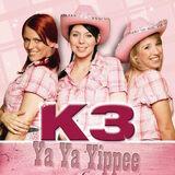 Ya ya yippee (single)