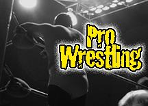 Pro Wrestling Logo