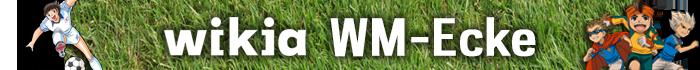 WM 2014 Blog-Header