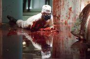 Dexter collapses