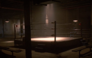 8 Boxing Arena Interior