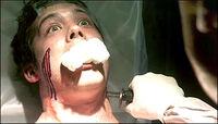 Dexter kills Freebo