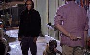 Dexter hides M99