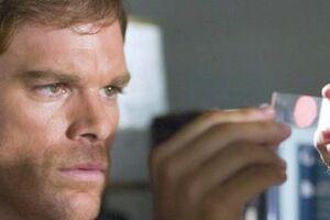 Dexter and blood slide 5