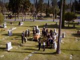 Forever Cemetery