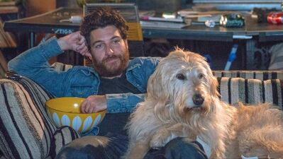 'Dog Days' Review: Canine Lovers Will Cry, Everyone Else Will Roll Their Eyes