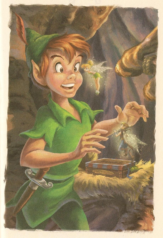 peter pan disney fairies wiki fandom powered by wikia