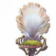 Water fairy chair