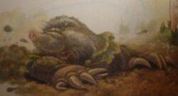 Grandmother Mole Profile