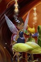 Diva Wings Profile