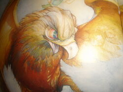 Golden Hawk Profile