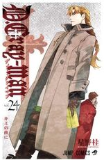 D.gray man vol.24