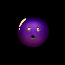 Themayorsspecialbowlingball