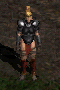 Amazon-Hard Leather Armor-Front.png
