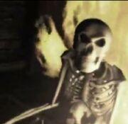 Skeleton-D2Intro2