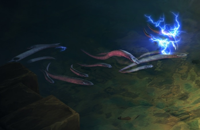 Electric Eel | Diablo Wiki | FANDOM powered by Wikia