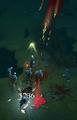 Corpse Lances 4.png