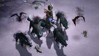 Diablo III Companions