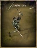 D3Skeleton.