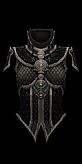 Unique chest set 14 x1 demonhunter female