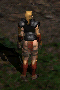 Amazon-Leather Armor-Back.png