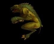 Burrowing leaper