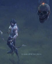 SH companion skull