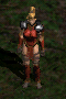 Amazon-Quilted Armor-Front.png
