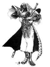 Hechicero