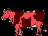 Lava Cow