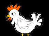 Chicken (farming)