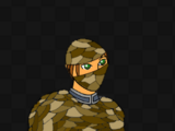 Snake Armour