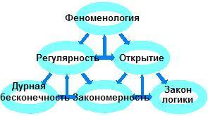 Fenomenolog