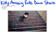Kitty Amazing GiF