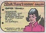 QuiverRG2